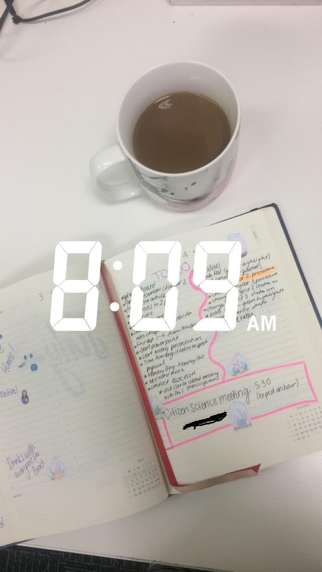 8.09am